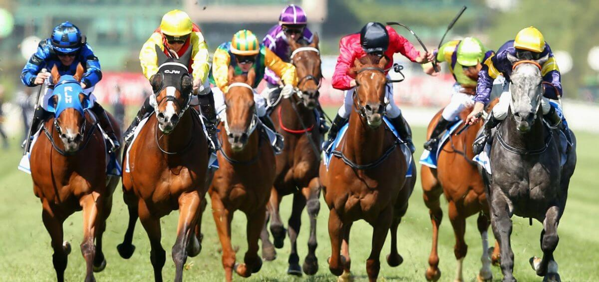 Melbourne Cup catering provided by Cherry's Events